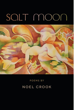 Salt Moon by Noel Crook